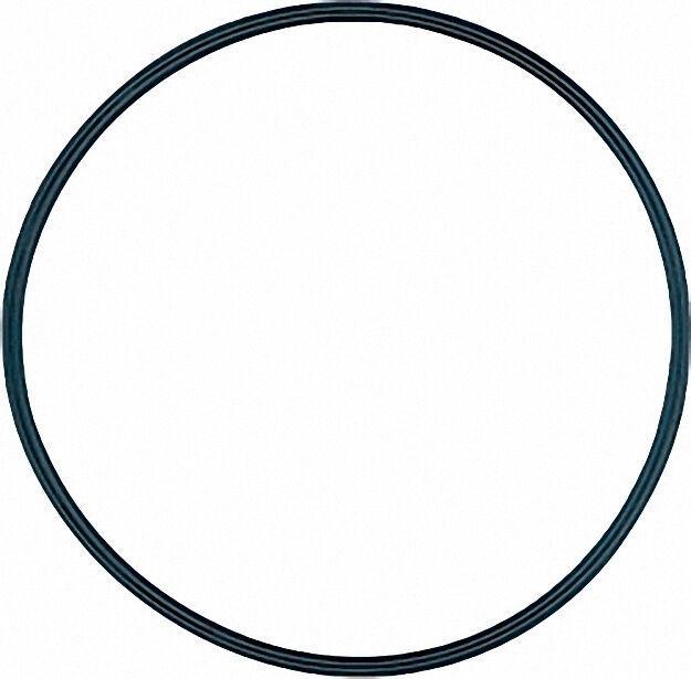 O-Ring Durchmesser 54,0x 3,0mm
