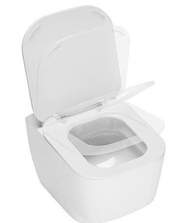WC-Sitz Fusion, softclose, weiß, BxHxT:355x40x470mm