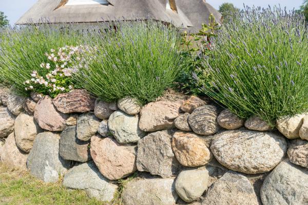 Natursteinmauer mit ungleichmäßigen Steinen