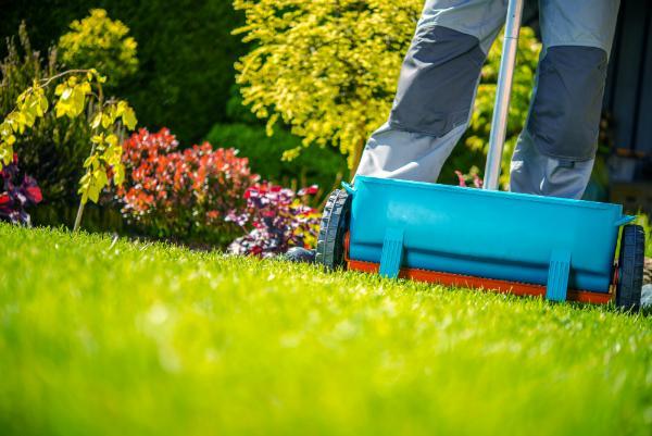 Fruehlingsduengung von Gras