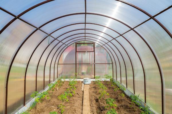 Gewächshäuser Marke Eigenbau sind eine tolle und praktische Ergänzung für den Garten