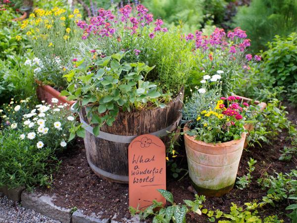 Alte Kisten, Fässer oder Wannen sind gut zum bepflanzen