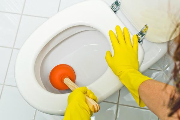 Eine verstopfte Toilette mit einem Pümpel reinigen