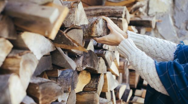 Holz ist aus auch finanzieller Sicht ein attraktiver Brennstoff