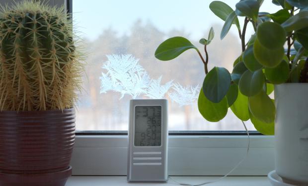 Frostwächter mit Thermostat vor einem Fesnter mit Frost