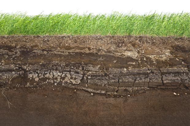 Querschnitt Rasen mit darunterliegendem Erdreich