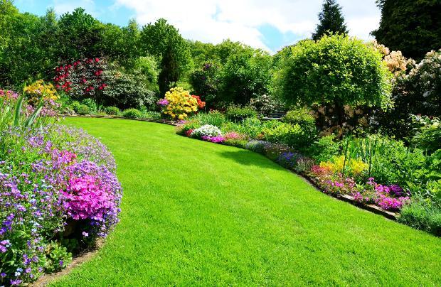 gesunder, schöner Rasen und Garten - Rasen vertikutieren im Frühjahr ist sinnvoll