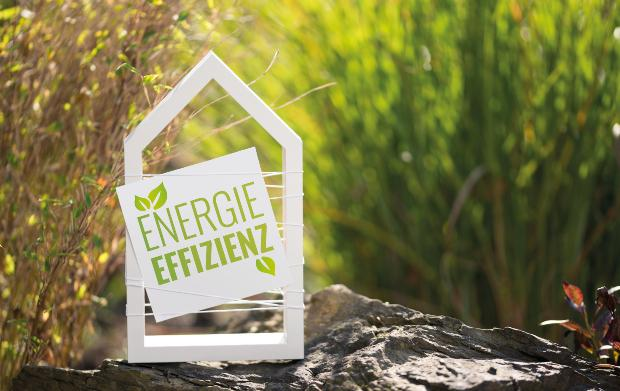 """Vor blühenden Pflanzen ist das Modell eines kleinen Hauses zu sehen, an dem ein Schild mit der Aufschrift """"Energieeffizienz"""" befestigt ist"""
