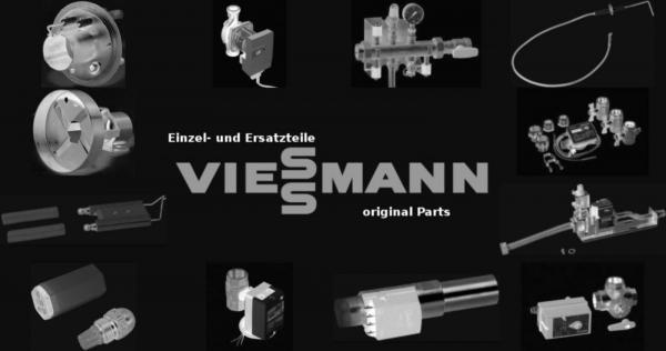 VIESSMANN 7833478 Strömungsschalter VKS 50 4200 l/h