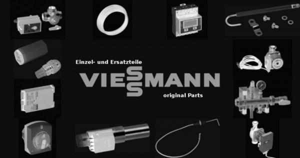 VIESSMANN 7816019 Reinigungsbürste 30/15 x 80 L=500mm