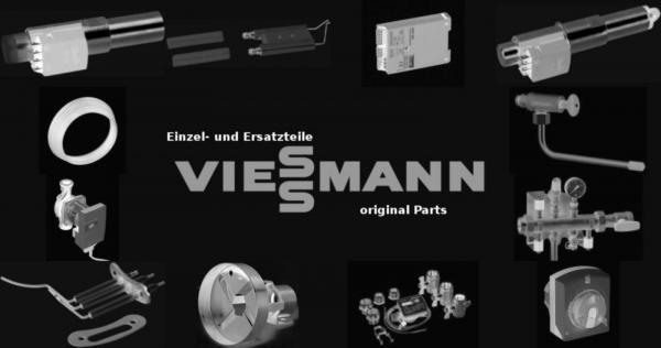 VIESSMANN 9502135 Zeigethermometer für VertiCell