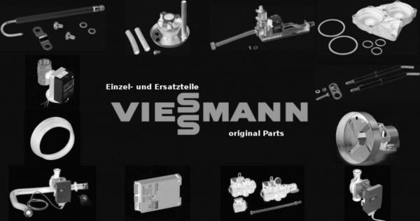 VIESSMANN 7383329 Brenner IZS Export RTF29