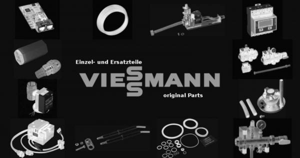 VIESSMANN 7323391 Wirbulator PS008