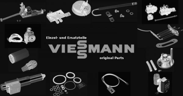 VIESSMANN 7817824 Mennige 125 cc