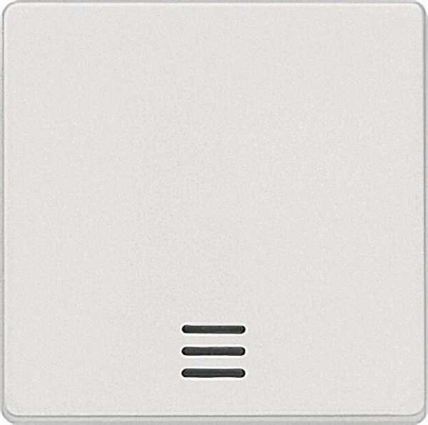 Wippe mit Fenster/ titanweiß 55mm x 55mm Schutzart IP20 / 1 Stück