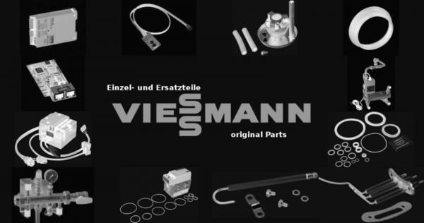 VIESSMANN 5015762 Schaurohr