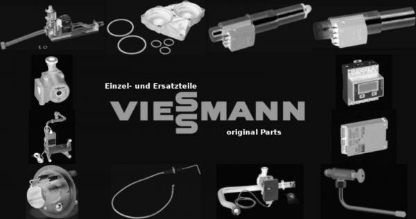 VIESSMANN 5003900 Roststab R II/2 geputzt