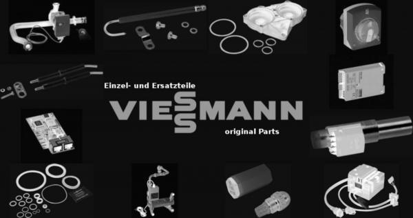 VIESSMANN 5057350 Guss-Segment III