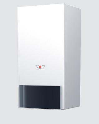 8613628C01 Paket Brennwerttherme CGB-100, BM