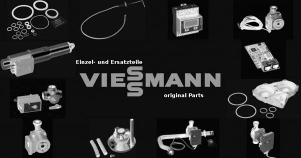 VIESSMANN 7839164 Ion-Leitung 11/Erde