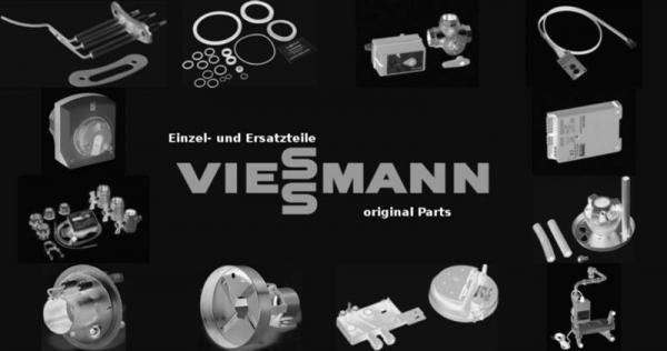 VIESSMANN 7833779 Wirbulator B50 T112 L2352