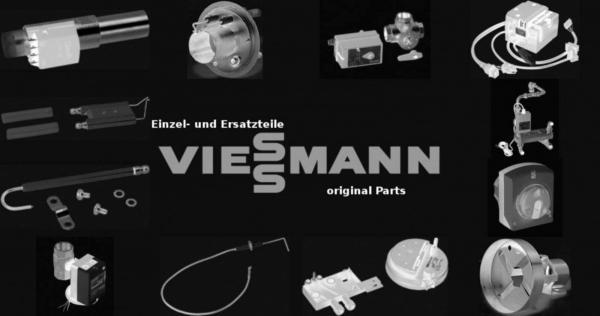 VIESSMANN 7815221 Glasschmelzeinsatz T 80mA 250V 5x20