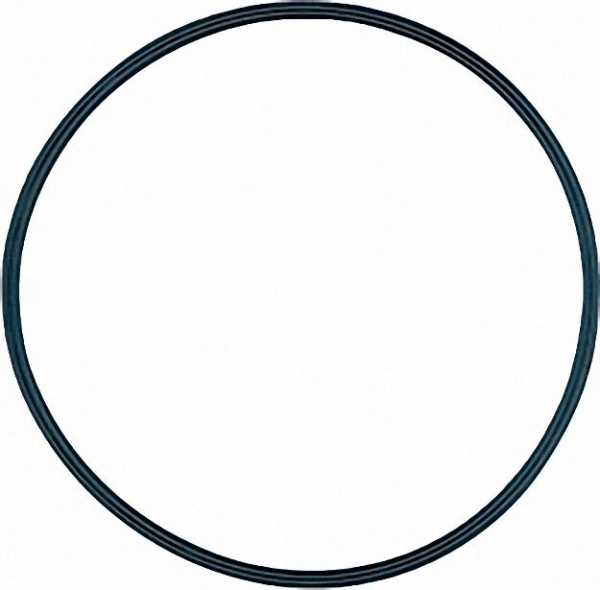 O-Ring (Deckeldicht. ) 3007162 EINZELN