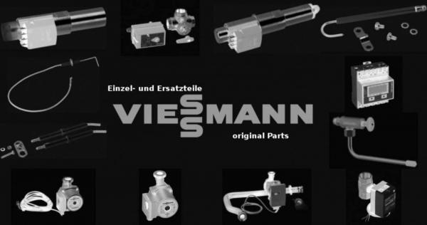 VIESSMANN 7831168 Hydraulik WHSA