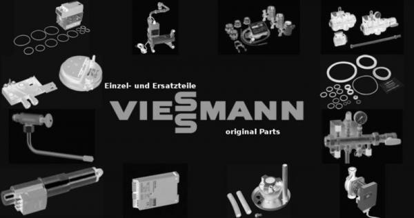 VIESSMANN 7831520 Laufschiene Set