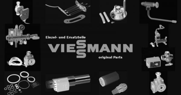VIESSMANN 9588144 D-Sicherung 20A DO2 gL-gG