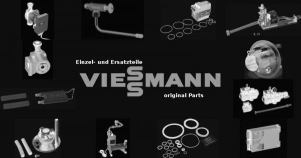 VIESSMANN 7009161 Wirbulator Duo-Parola-e 45,9 - 55,8 kW