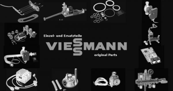 VIESSMANN 7324581 Tür 1
