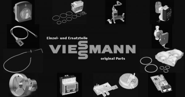 VIESSMANN 7817359 Tür m.Türstein oben+unten u. Dichtschnur