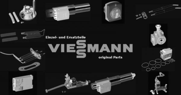VIESSMANN 7811935 Rückschlagklappe R1''MS60