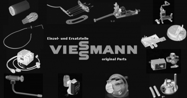 VIESSMANN 5204486 Lichtstift