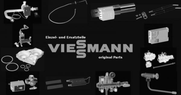 VIESSMANN 9507325 Reinigungsbürste D=63 x 100 - M10 mit Gewindemuffe M10