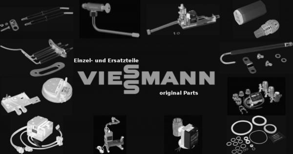 VIESSMANN 7817922 Parameterstecker