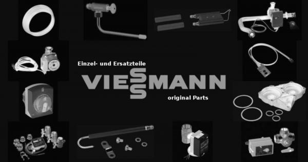 VIESSMANN 5076189 Flachrost Flammino-01