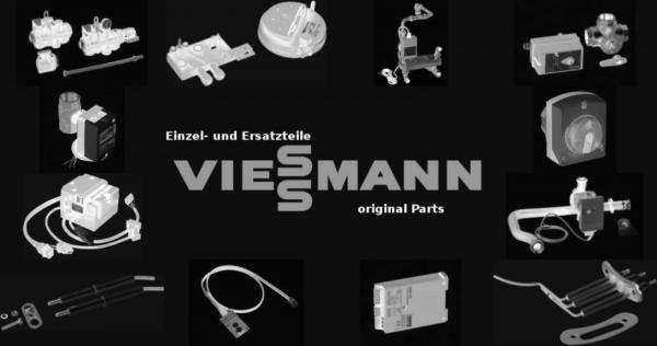 VIESSMANN 7819845 Zündelektroden links/rechts