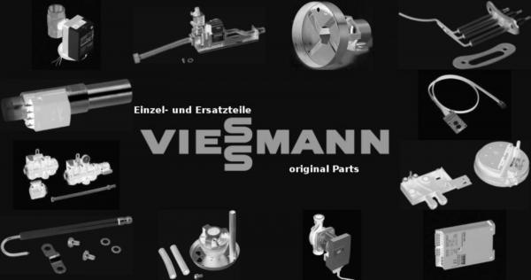 VIESSMANN 5057356 Guss-Segment III