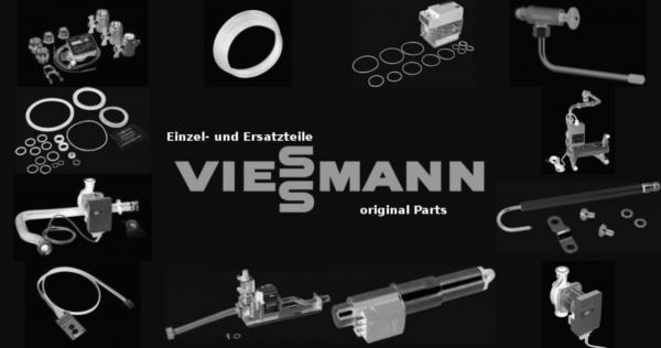 VIESSMANN 7815594 Sicherung T 1,25A 250V (1 Stück)