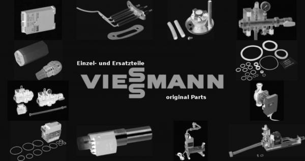 VIESSMANN 7252725 Schauglas