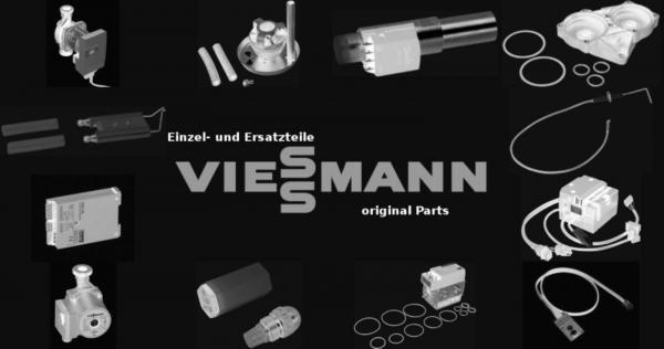 VIESSMANN 5563085 Reinigungsbürste 100/40 x 130 L=1180