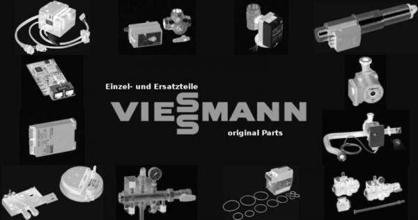 VIESSMANN 7810520 Reinigungsbürste