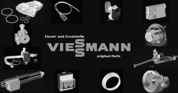 VIESSMANN 7841855 Zylinderflammkörper G20 und G31