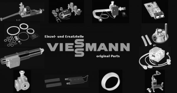 VIESSMANN 5076103 Vorstehrost F 12