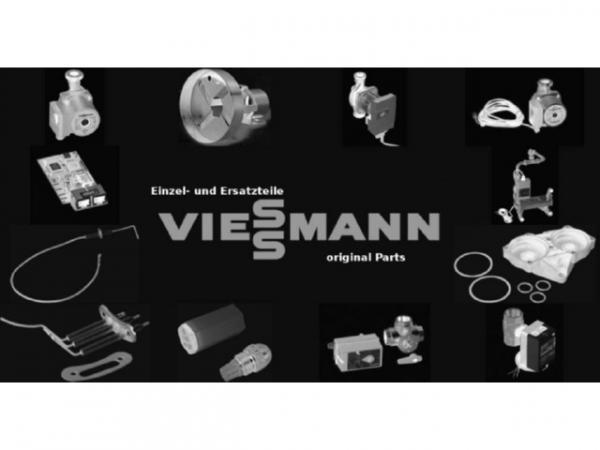 Viessmann Reinigungsbürste 30/20 x 80 L=900 9589483