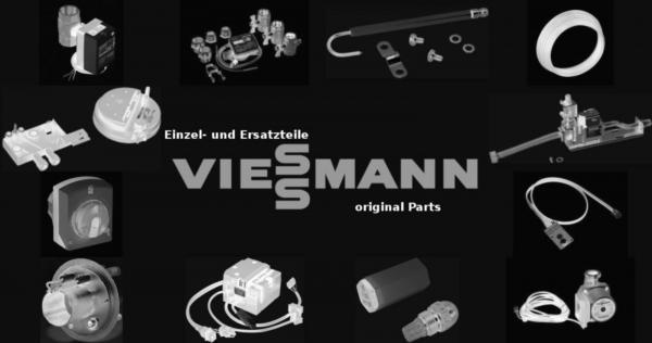 VIESSMANN 7404936 Timer