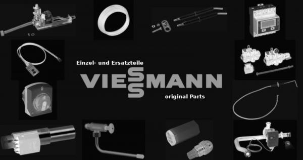 VIESSMANN 7833423 Ionisierer mit Leitung