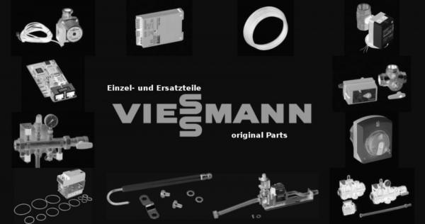 VIESSMANN 7828115 Mikroschalter